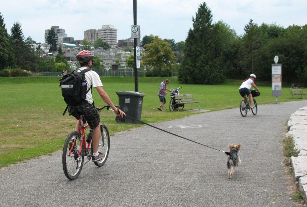 Biking the dog
